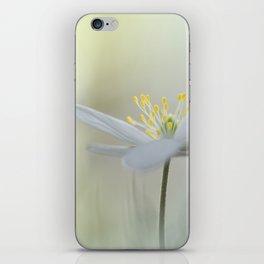 Irresistible Wood Anemone.... iPhone Skin
