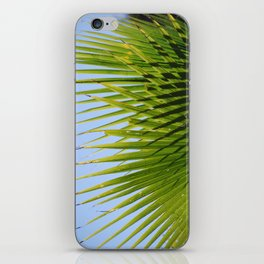 Puerto Vallarta, Mexico iPhone Skin