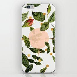 Leaves + Dots iPhone Skin