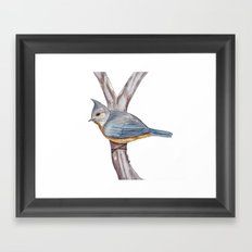 Grey-crested Tit Framed Art Print