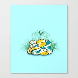 Noodle and his friend ! Canvas Print