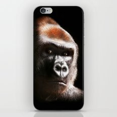 Kouillou iPhone & iPod Skin