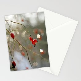 ROSEHIP AND BOKEH Stationery Cards