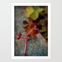 clover Art Prints featuring Clover by LoRo  Art & Pictures