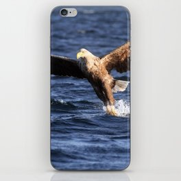 Eagle catching Fish iPhone Skin