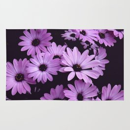 Black & Lilac Color Purple Daisies Rug