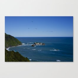 Knights Point, New Zealand Canvas Print