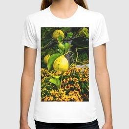 LemonTree T-shirt
