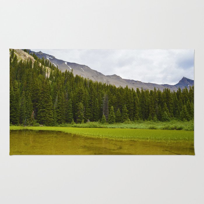 Views along the Wilcox Pass Hike in Jasper National Park, Canada Rug