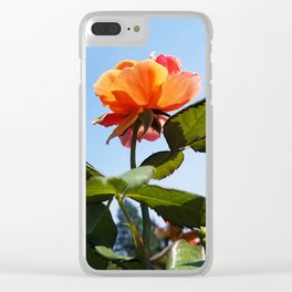 Rose & Sky Clear iPhone Case