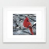 cardinal Framed Art Prints featuring Cardinal by Ben Geiger