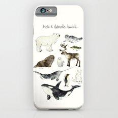 Arctic & Antarctic Animals Slim Case iPhone 6