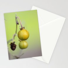 Gypsy Queen Stationery Cards