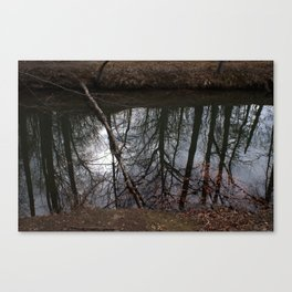 Reflections vs. Reality Canvas Print