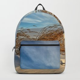 Snow Dunes Backpack