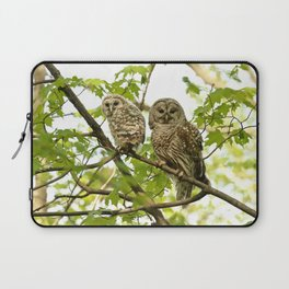 Barred owl mother and child Laptop Sleeve