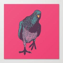 Pop Pigeon Canvas Print