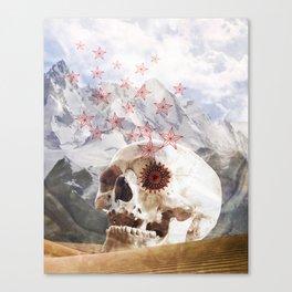 Little Star Canvas Print
