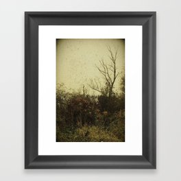 Autumn Mood Framed Art Print