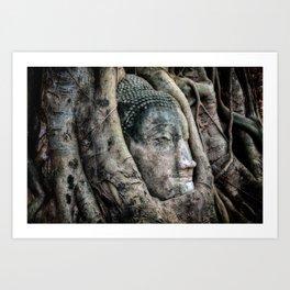 Banyan Tree Buddha Art Print