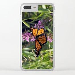Monarch Splendor Clear iPhone Case