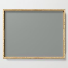 Relaxing Gray Solid Color Accent Shade / Hue Matches Sherwin Williams Earl Grey SW 7660 Serving Tray