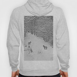 Coyotes Art Decor. Hoody