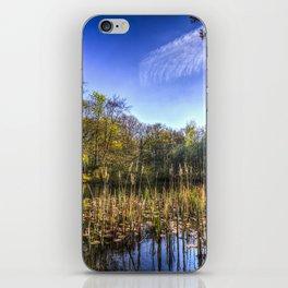 The Bulrush Pond iPhone Skin