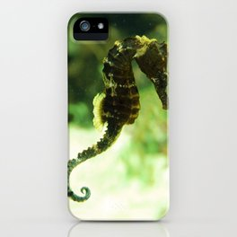 Tropical Seahorse with Coral iPhone Case