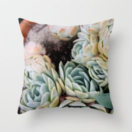 California Potted Succulents Throw Pillow