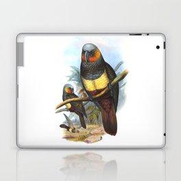 Masséna Kaka Parrot, tropical bird in the nature of New Zealand Laptop & iPad Skin