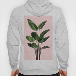 Bird of Paradise Plant on Pink Hoody