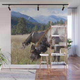 Watercolor Elk Cow 25, Estes Park, Colorado, Grazing Gals Wall Mural