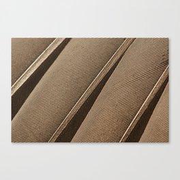 Barnacle goose feathers detail brandgans veren  Canvas Print