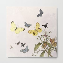 Let us dance in the sun- butterflies  Metal Print