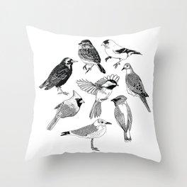 Birds of the Northeast Throw Pillow