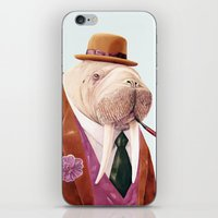 walrus iPhone & iPod Skins featuring Walrus by Animal Crew