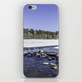 Pure Mississippi iPhone Skin