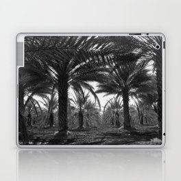 Date palms. Coachella Valley, California Laptop & iPad Skin