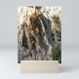 Ambiance Macré 2 . Le lion des sables se réveille doucement Mini Art Print