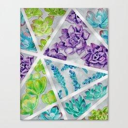 Watercolor succulent painting Canvas Print