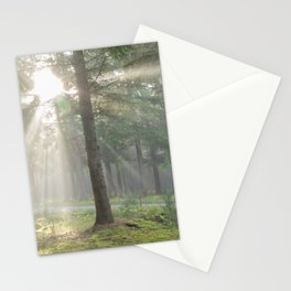 Into the wild forest - North Kessock, Highlands, Scotland Stationery Cards