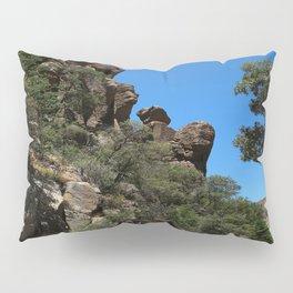 Scenic Bonita Canyon Road Pillow Sham