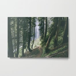 To The Falls Metal Print