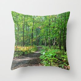 Show Me Another Way Throw Pillow