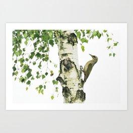 Woodpecker in green  Art Print