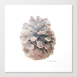 Pinecone Watercolor Art Canvas Print