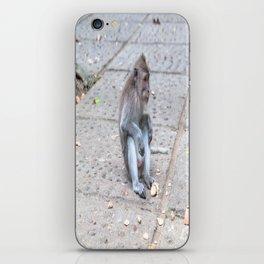 Crab-eating Macaque VII (Balinese Monkey) iPhone Skin
