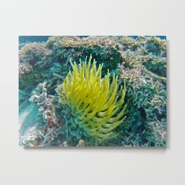 Turks and Caicos Adventure Metal Print