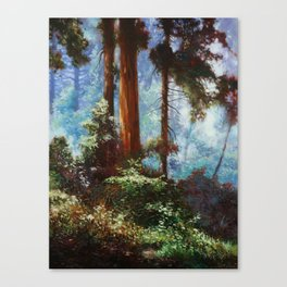 The Forrest Through the Trees Canvas Print
